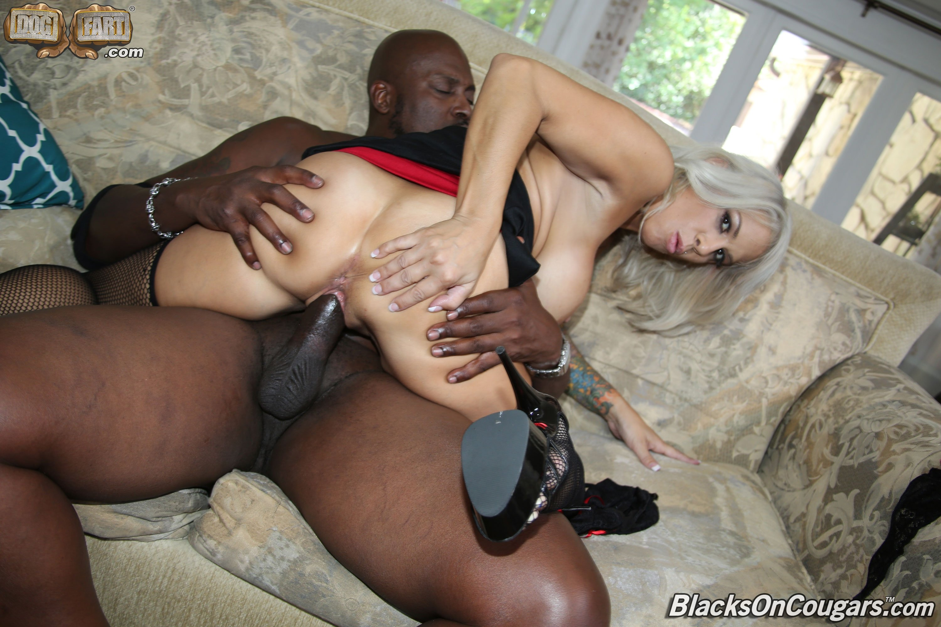 two black females having sex