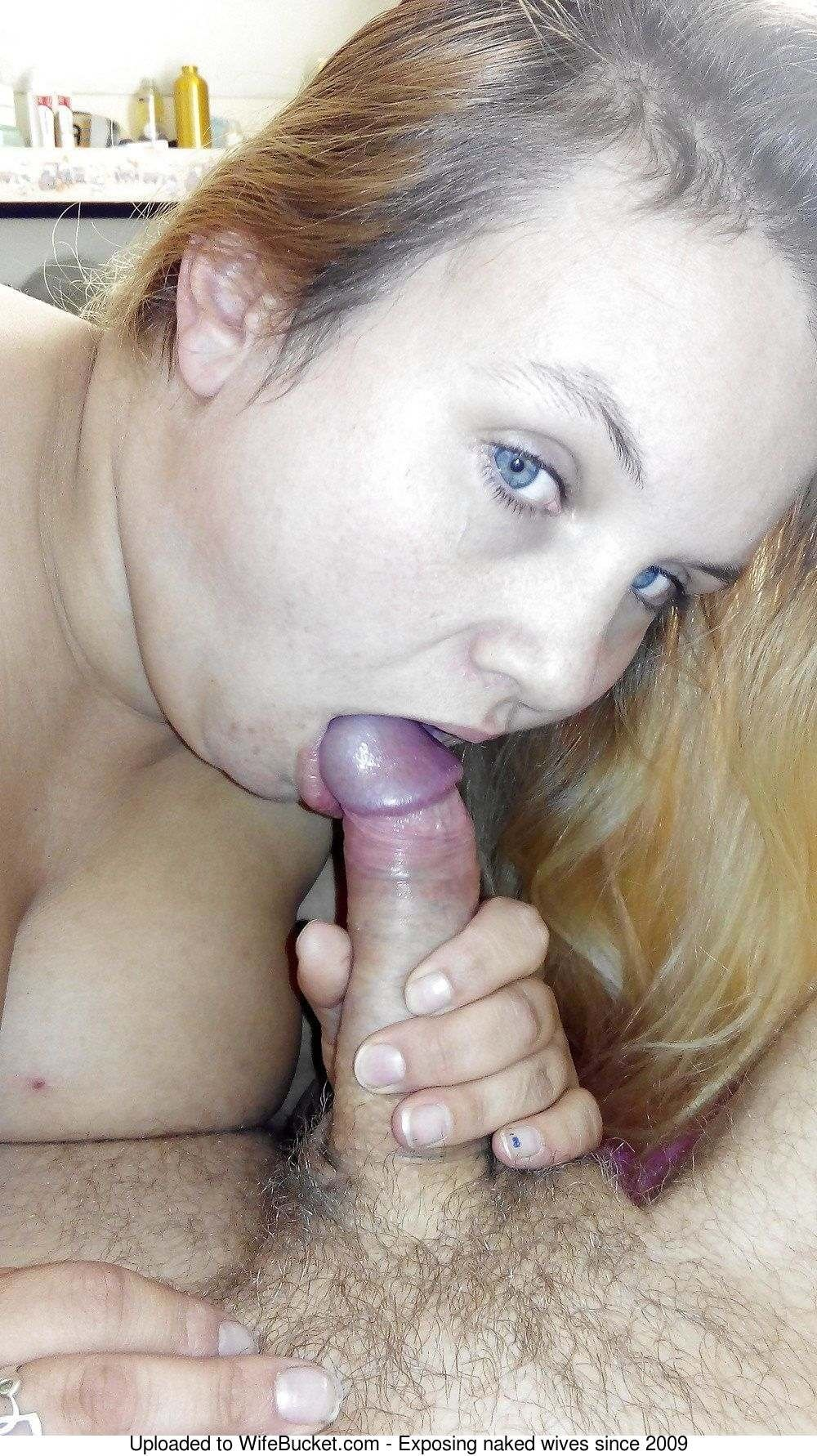 Seachshy wife toronto sex #12
