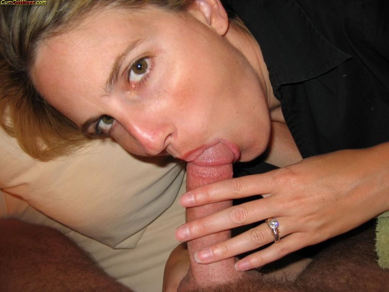 Husband Giving Blowjob Free Gallery 41