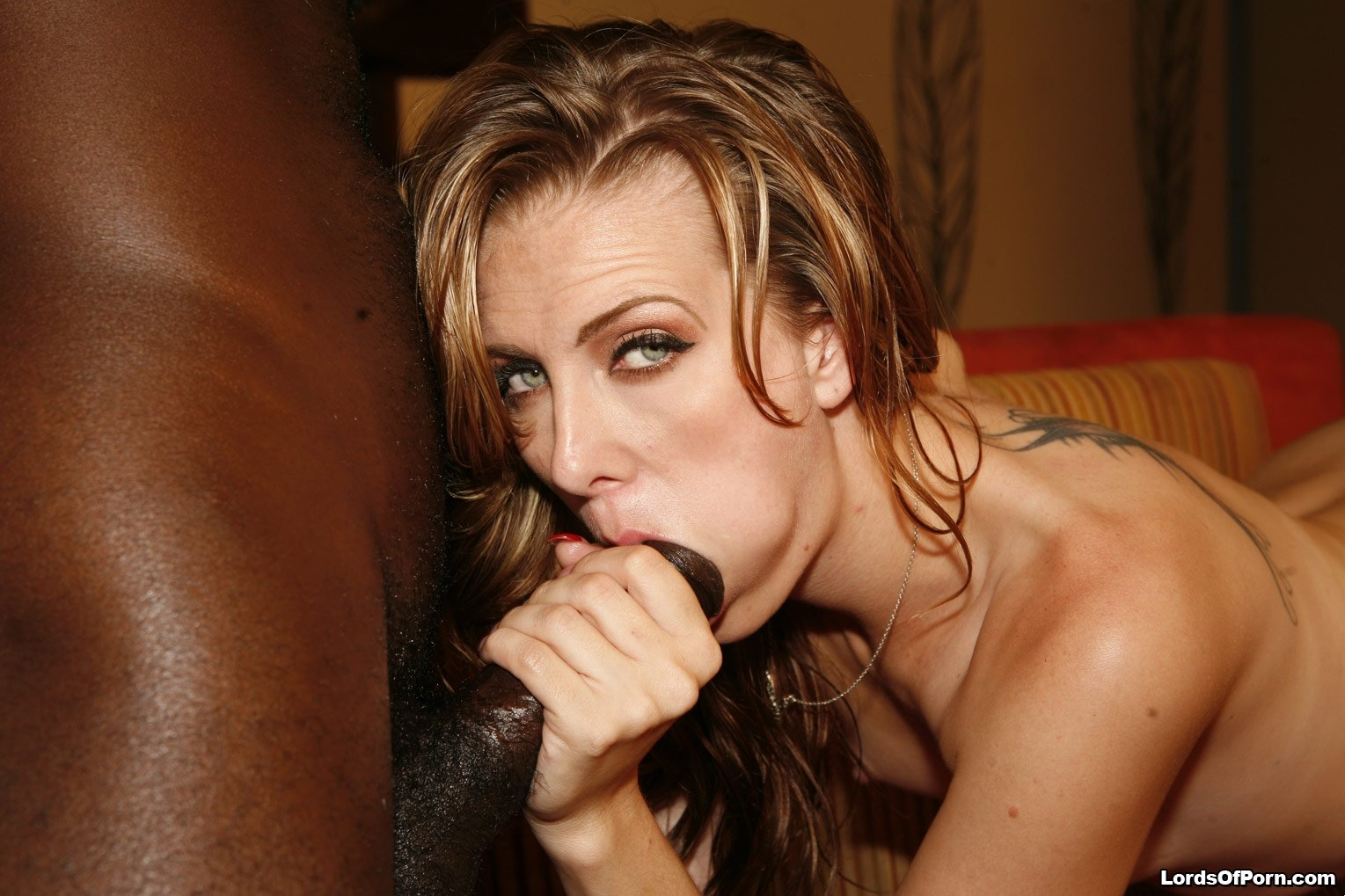 best free sex chat sites