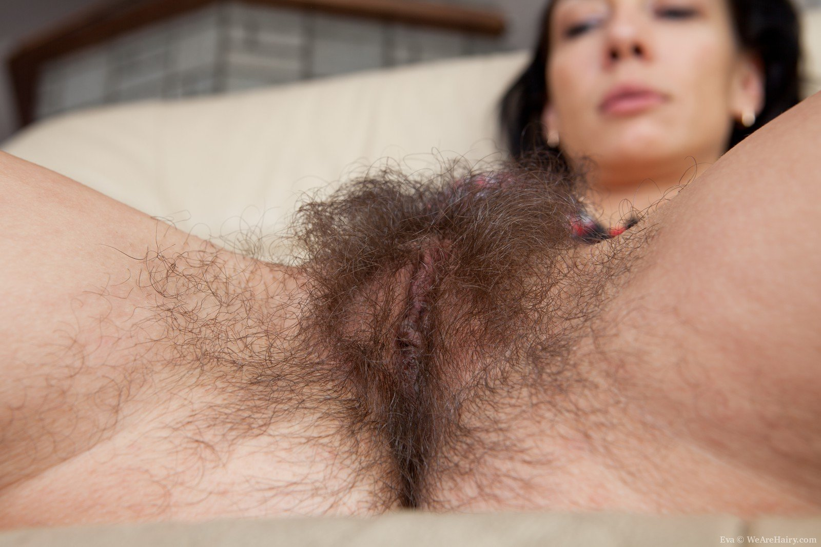 the nicest hairy pussy ever gallery 2/2