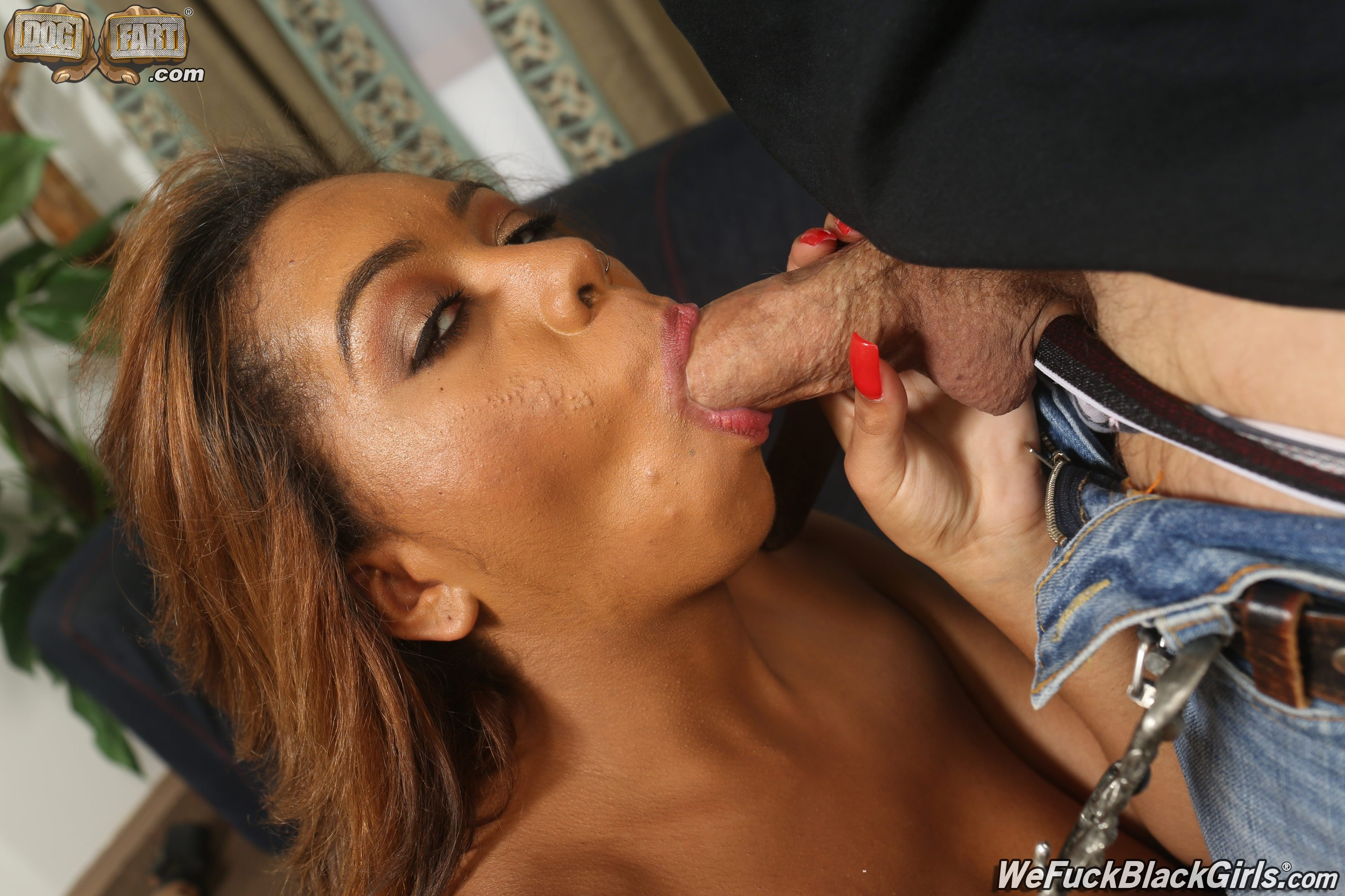 Xvideos french anal #1