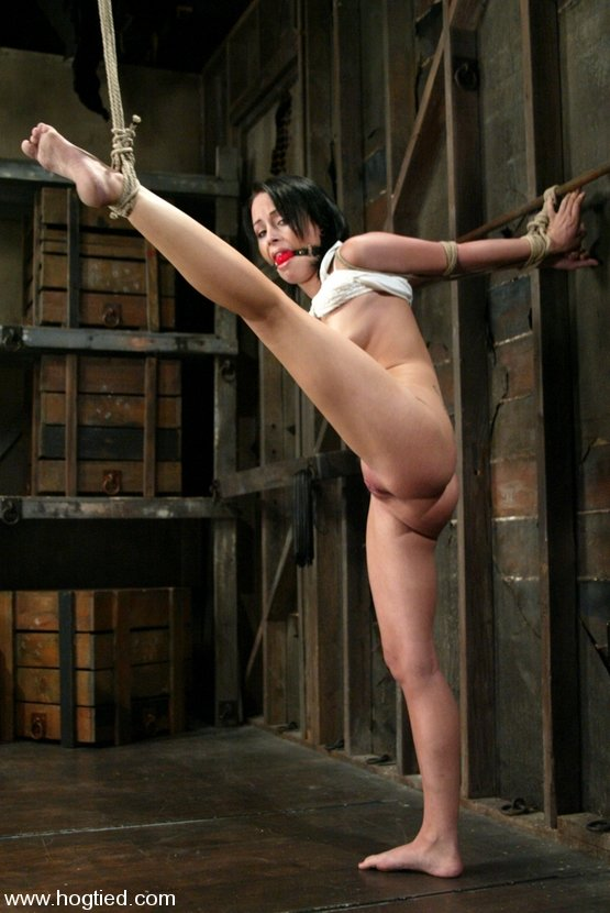 Tule    reccomended free vr xxx download