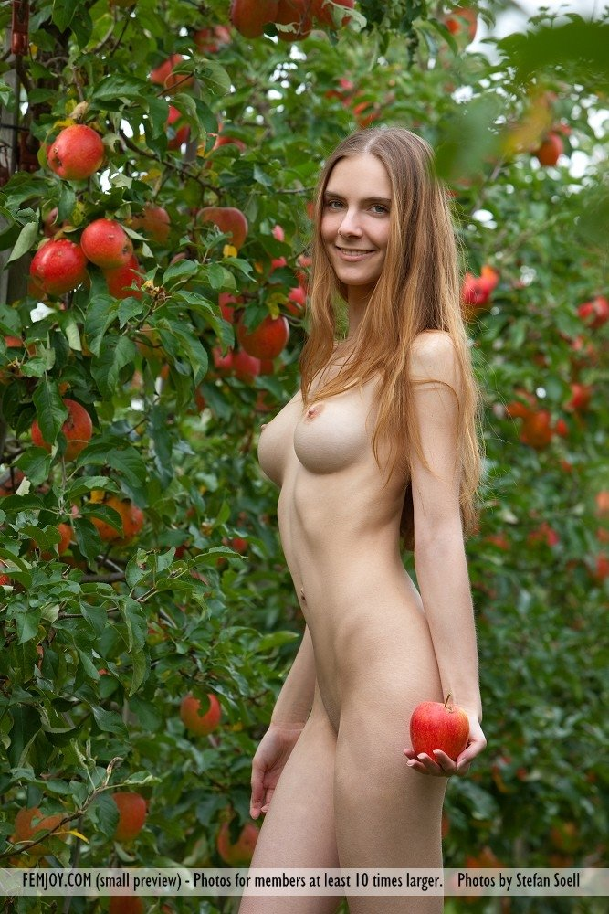 Discreetly ordering adult toys online