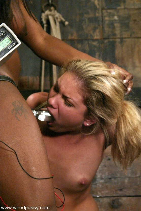 Slutty lesbian bombshells are gaping and fist fucking anals