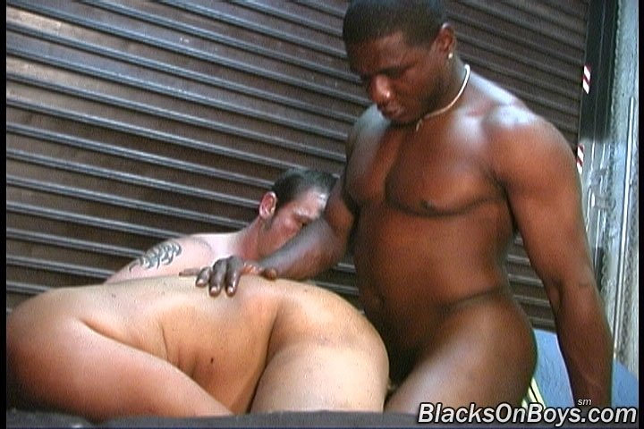 Ebony girls fucked by shemales