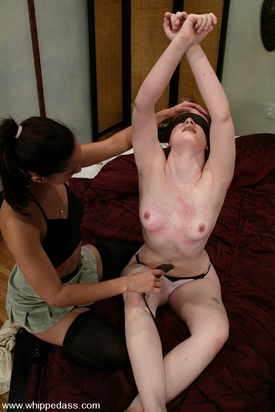 Anal especial argent 1