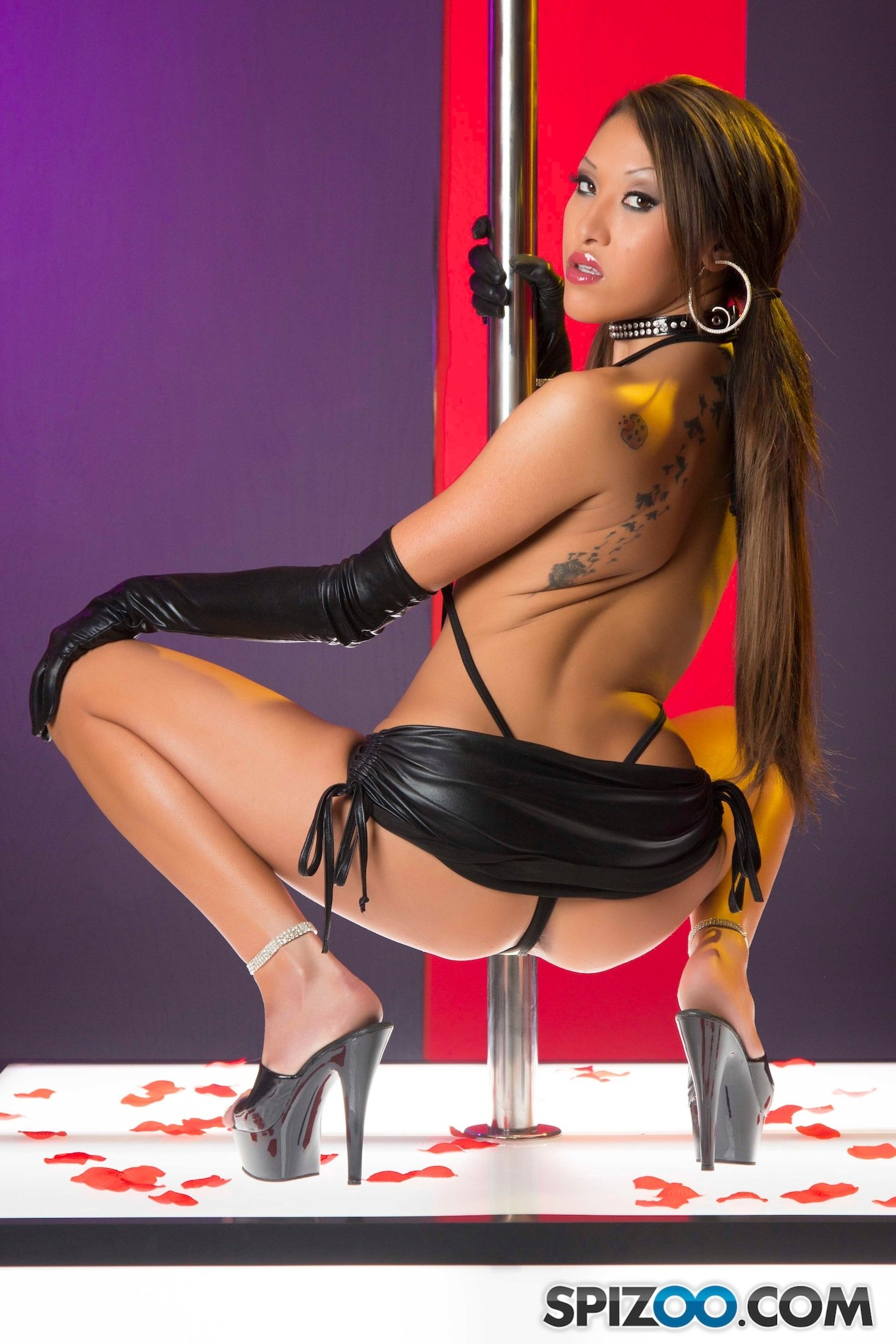 pole dancer picture gallery