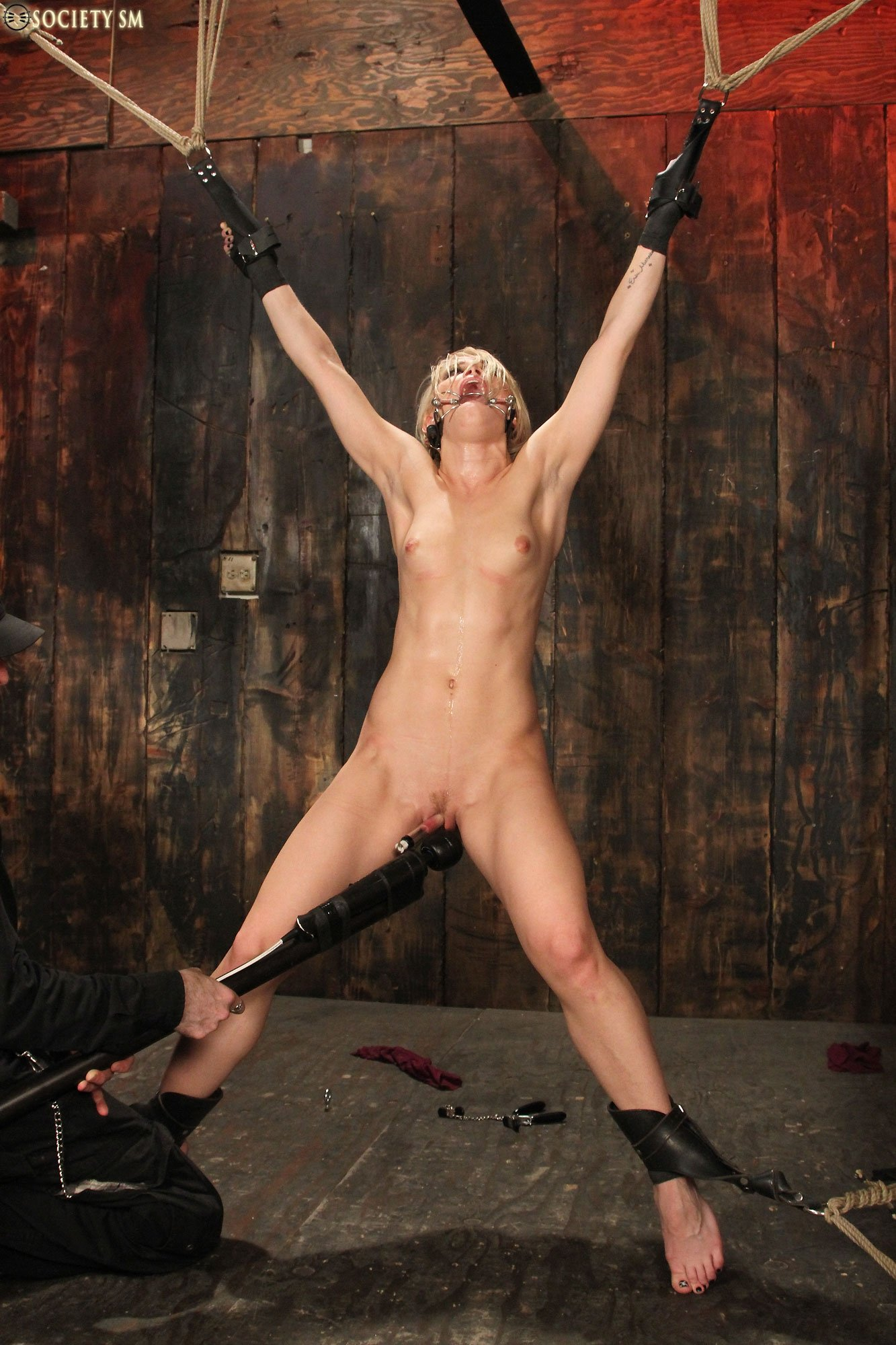 Whipped Bdsm