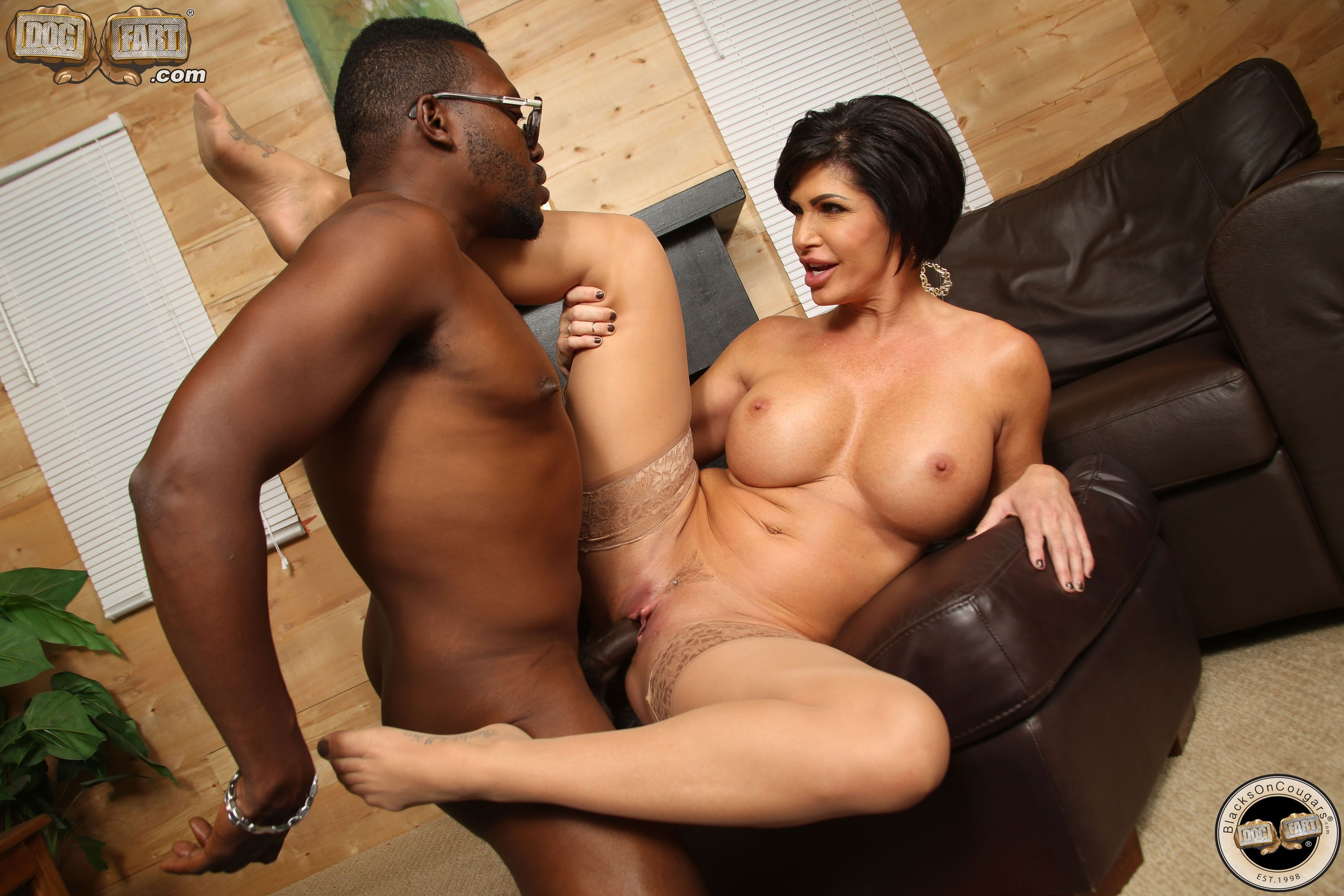 Chicago white wife bbc 2