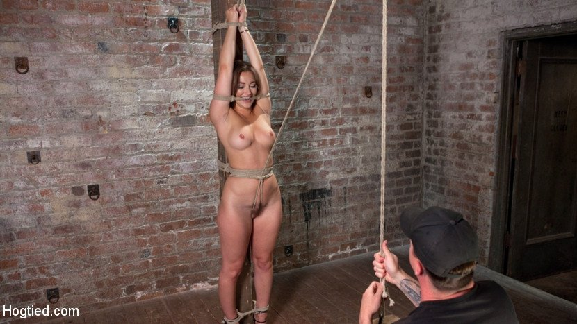 dani-daniels-kink-galleries-suck-my-dick-video