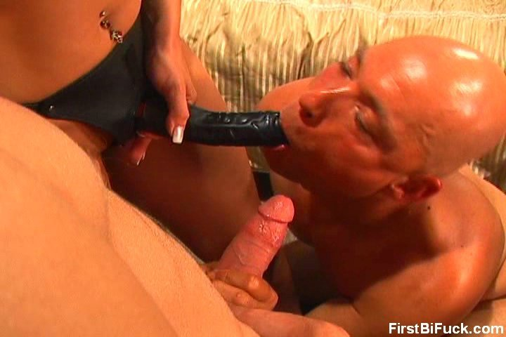 best of seahorse dildo anal