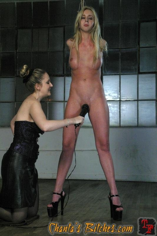 blonde dog blowjob