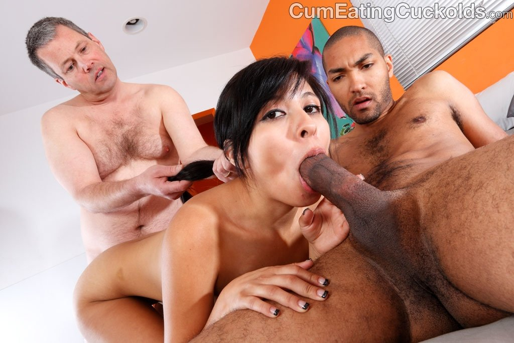 porn wife and bbc