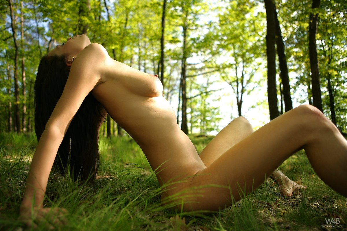 Free cybersex webcam chat rooms