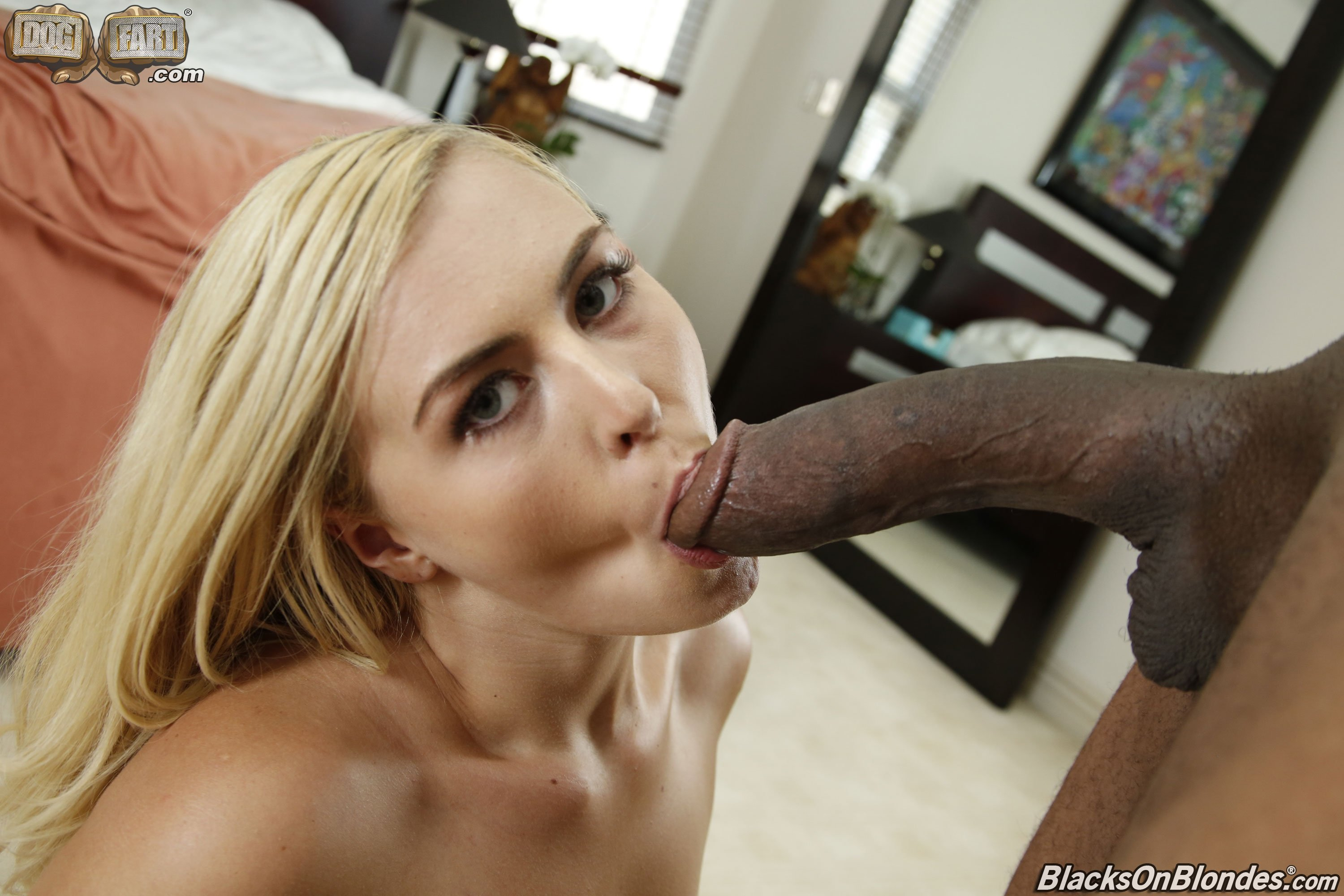 Xvideos anal oil #1