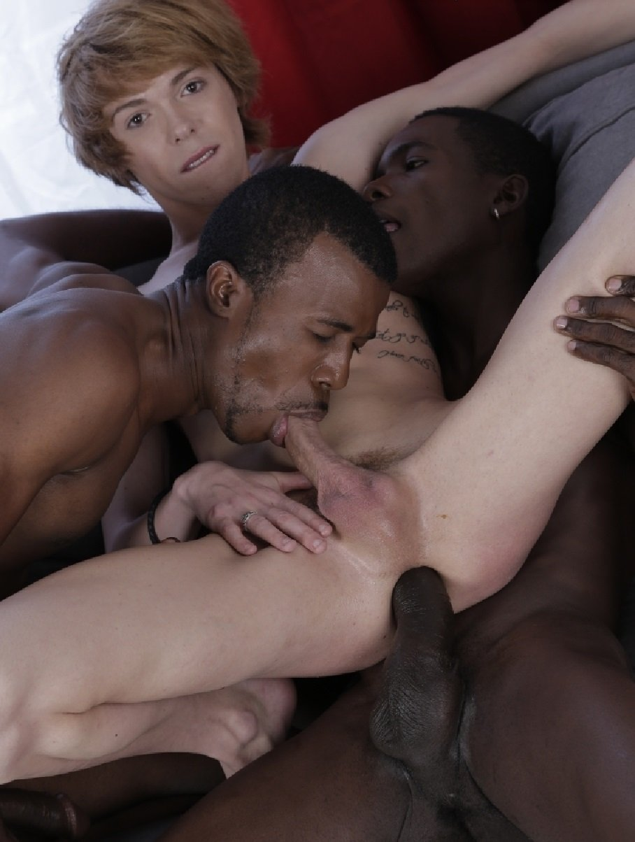 Free Young Gay Sex Video