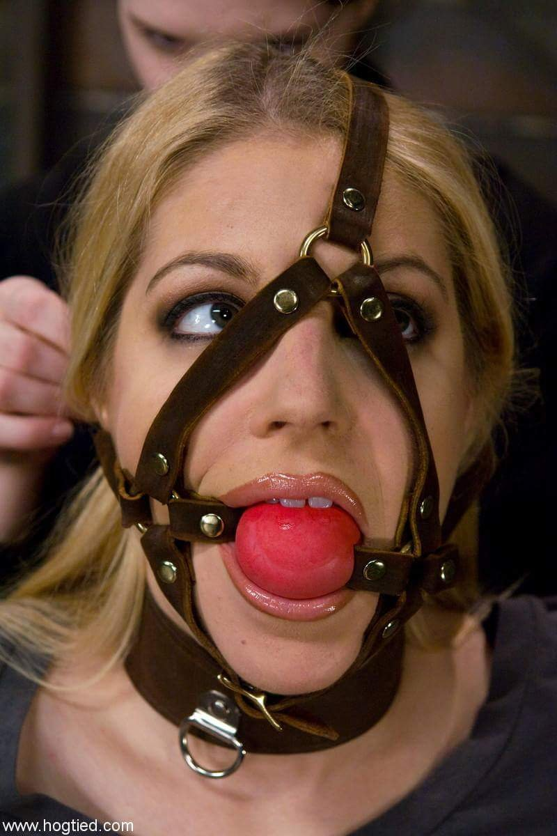 Wiffle Ball Gag : Most Relevant