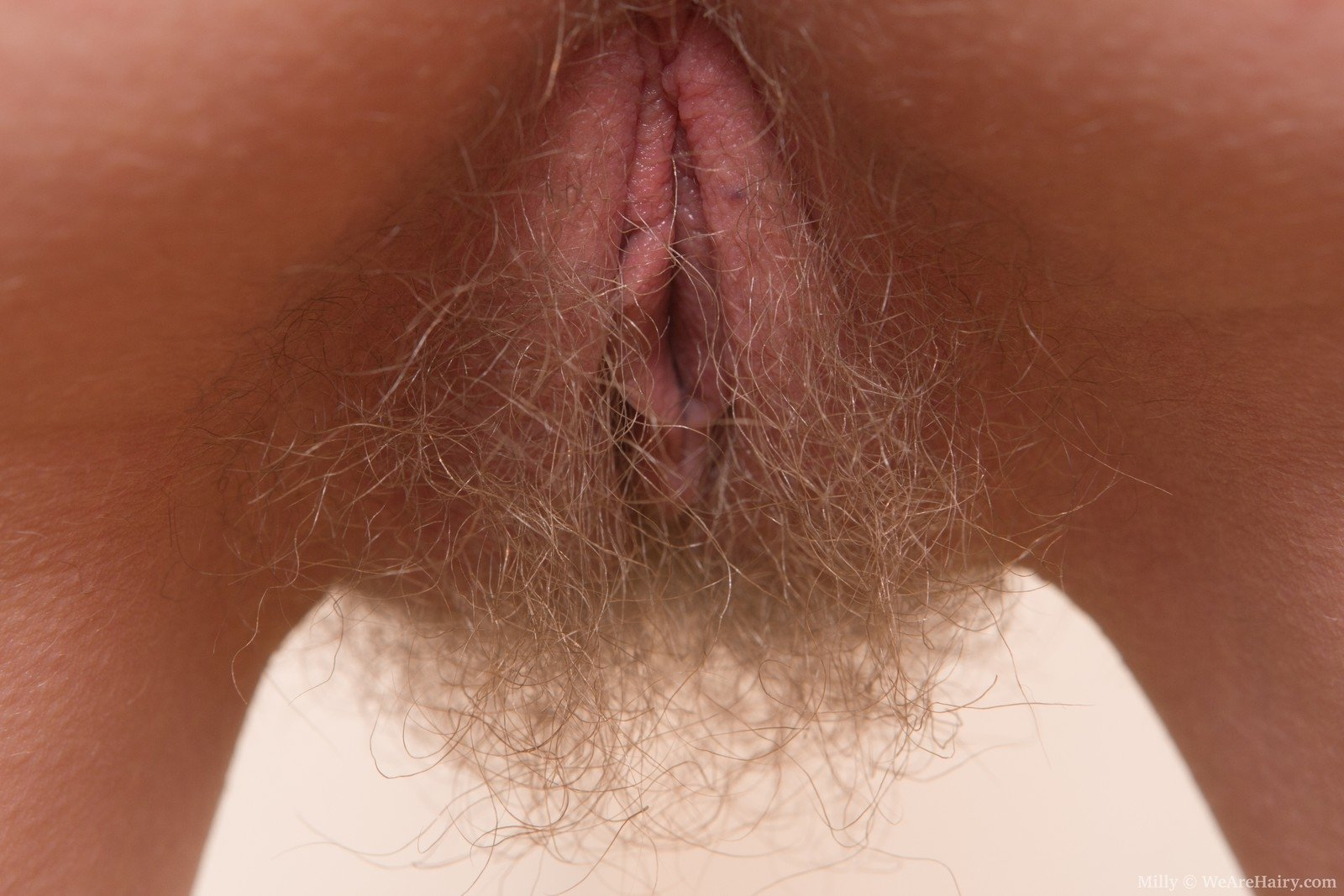 bright-golden-hair-pussy-pictures-bent-dick-deepthroat