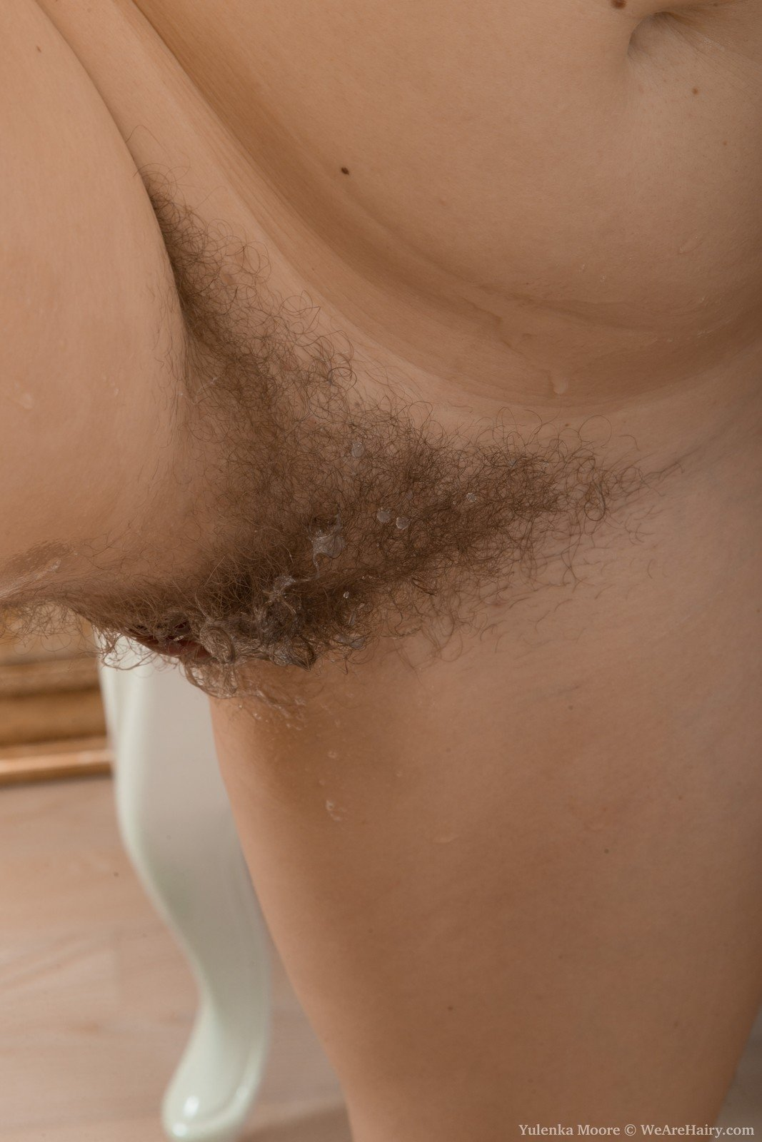 hot black hairy porn