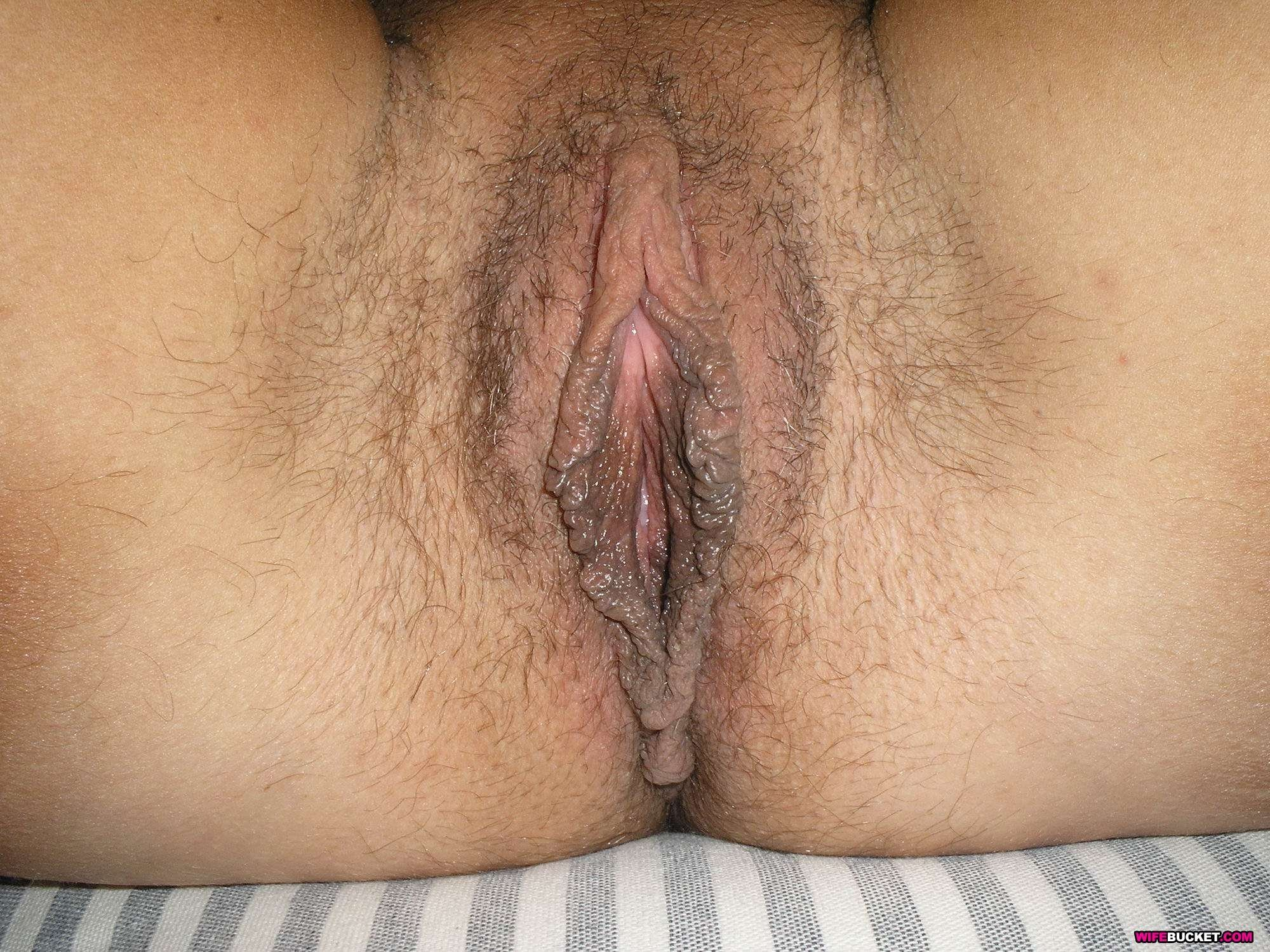 bbw riding dick hard