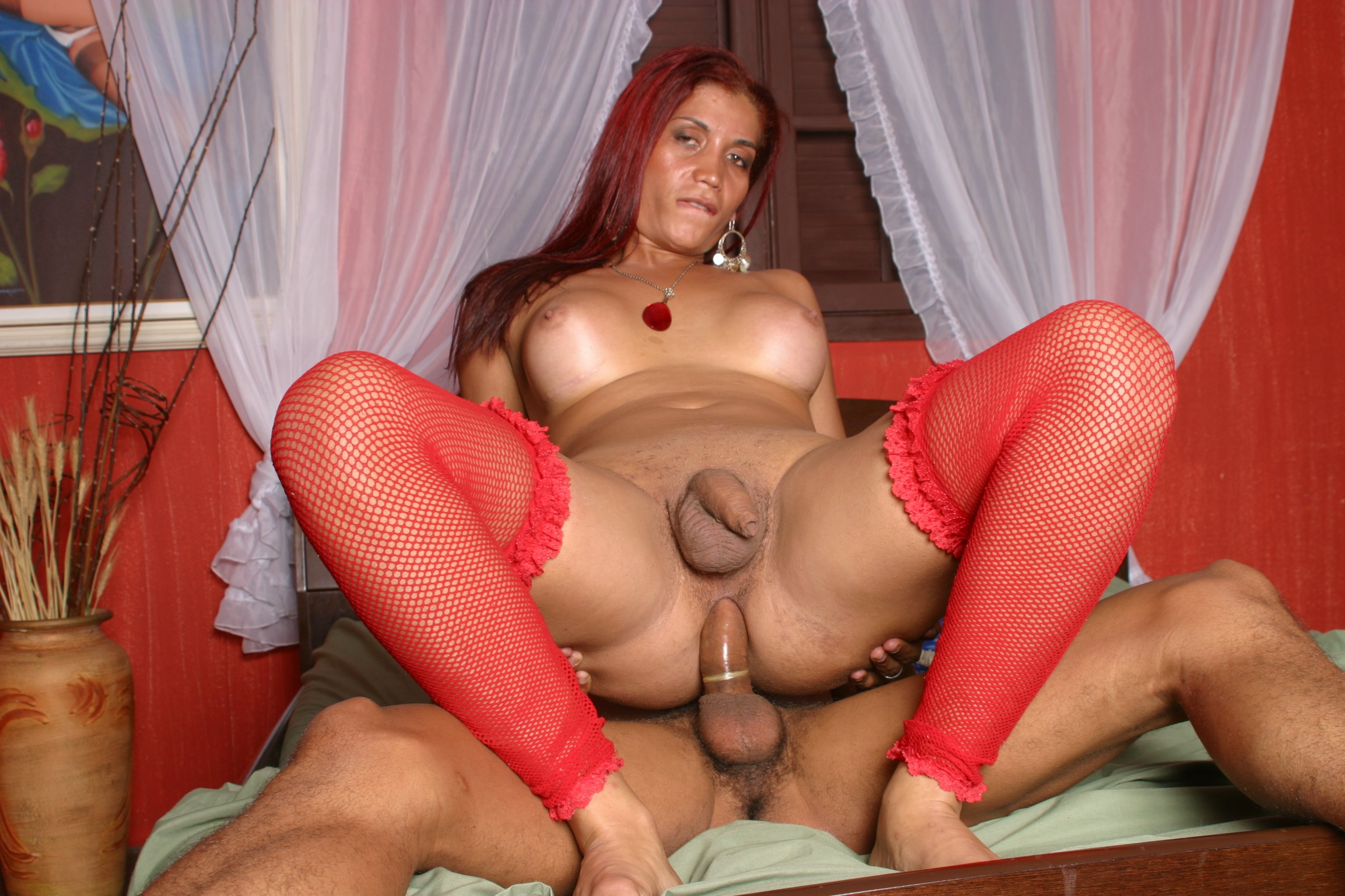 Free shemale tranny mature clips video