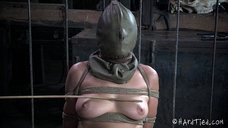 young asian with big tits