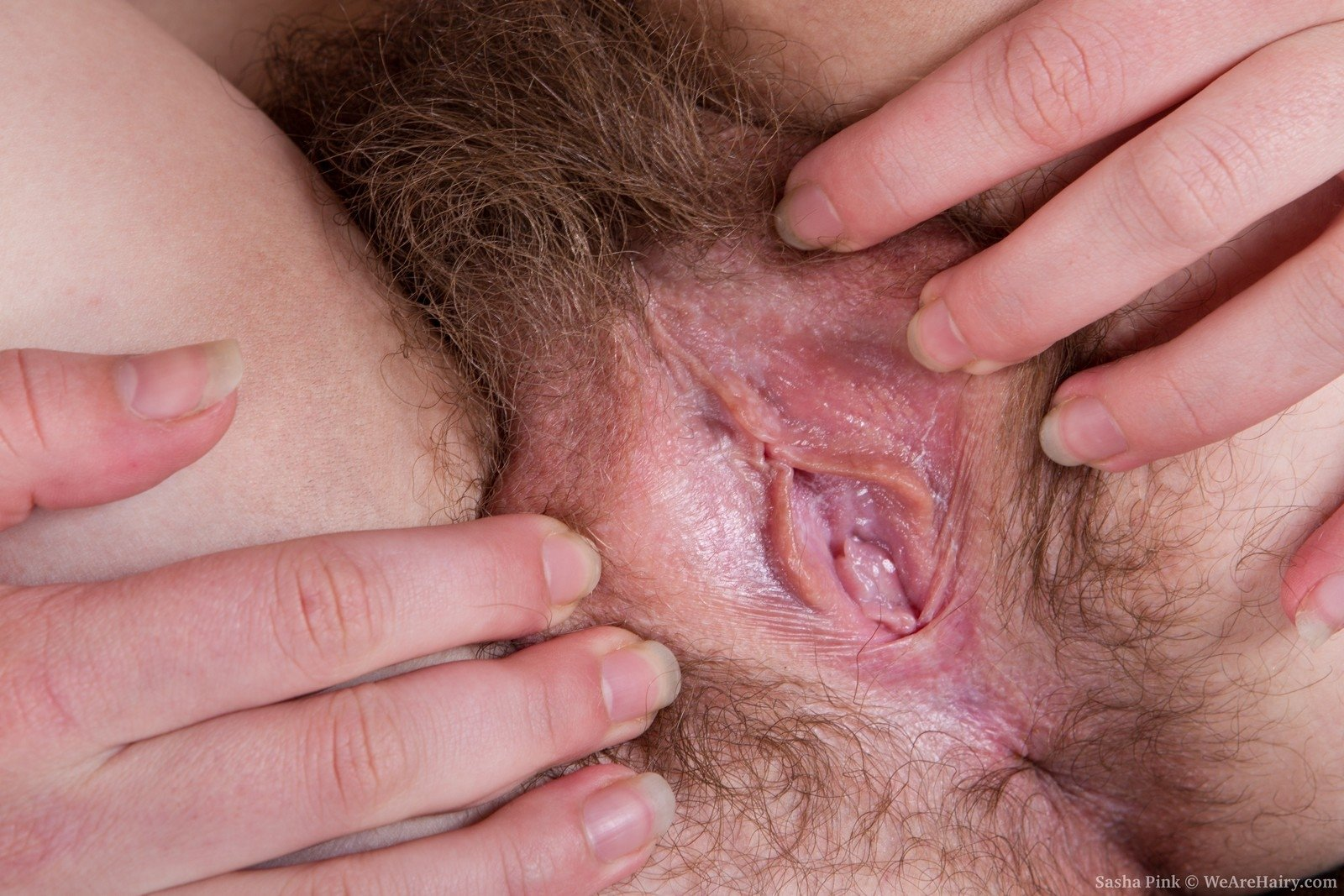 very hairy granny sex