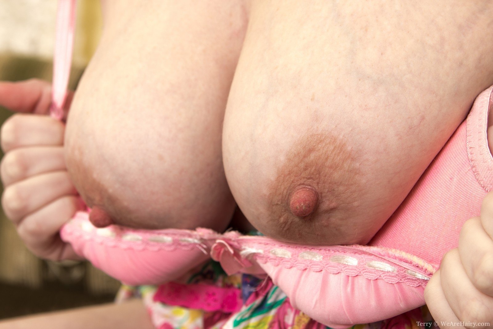 Vibar    reccomend old and young hairy lesbians