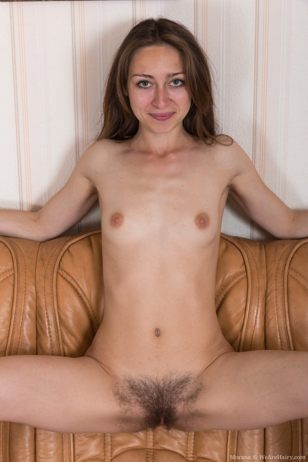English amateur tegan