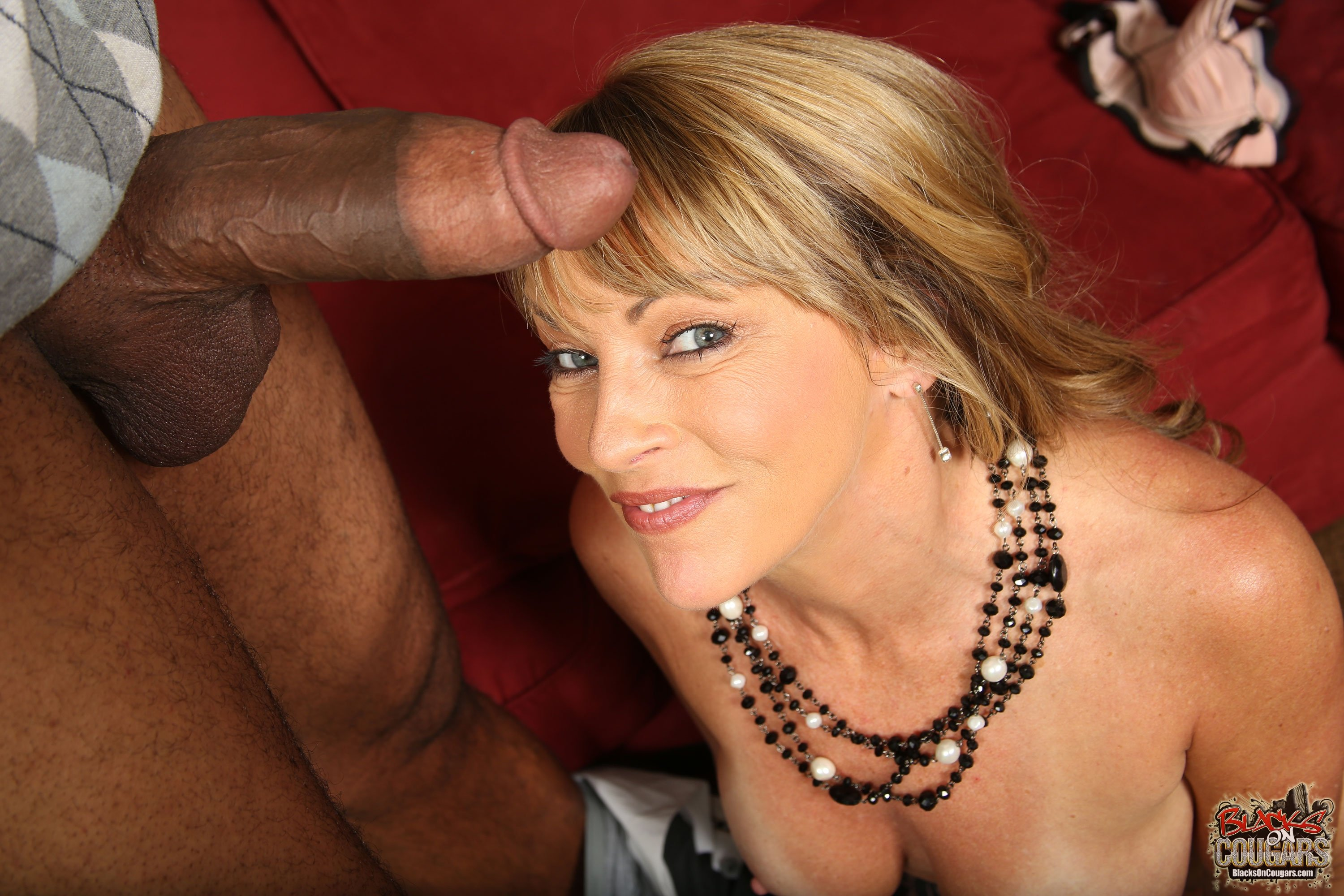 Shayla Laveaux Interracial Porn Videos