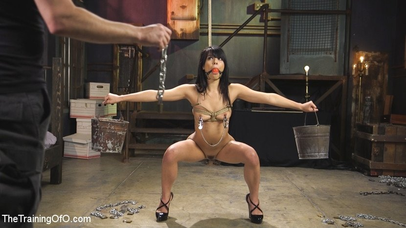 Bdsm female sex slave #13