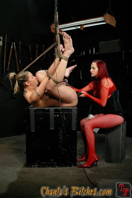 Domina bitches are specialized for ball busting actions