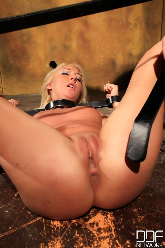 Jaylene campion Straighten penis manually party pool sex
